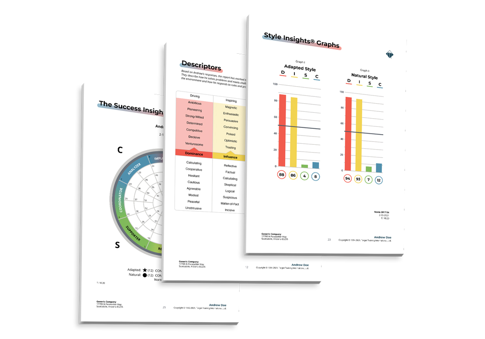 DISC-assessment-results-2