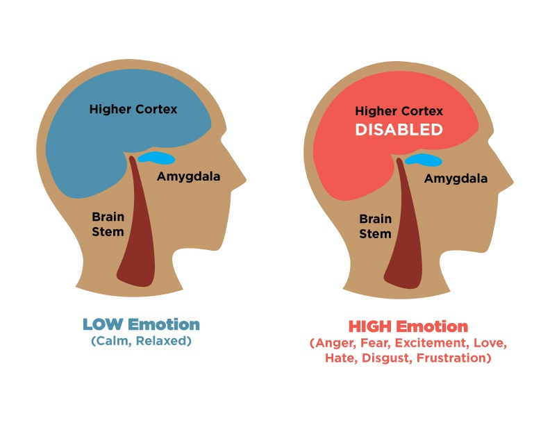 Brain map of an emotional hijack