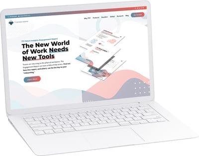 ttisi-website-engagement-report